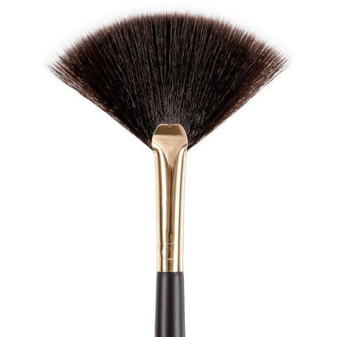 B6 Fan Brush