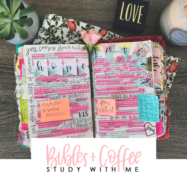 Study With Me Guide (A Guide to Reading the Bible)