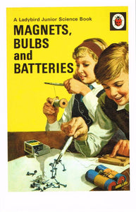 LB 17 - Magnets, Bulbs and Batteries