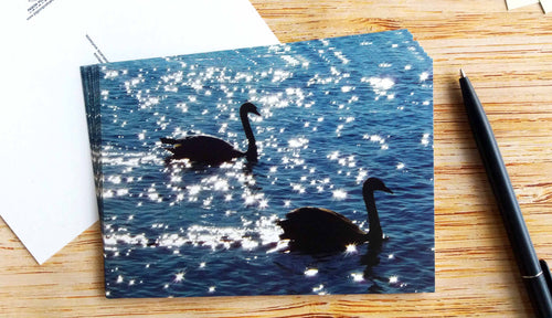 10 pieces - Swans at Sunset