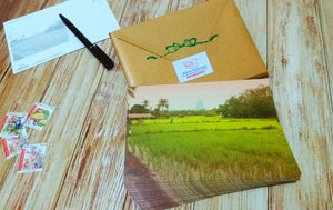 27 pieces - Paddy Field in Perlis