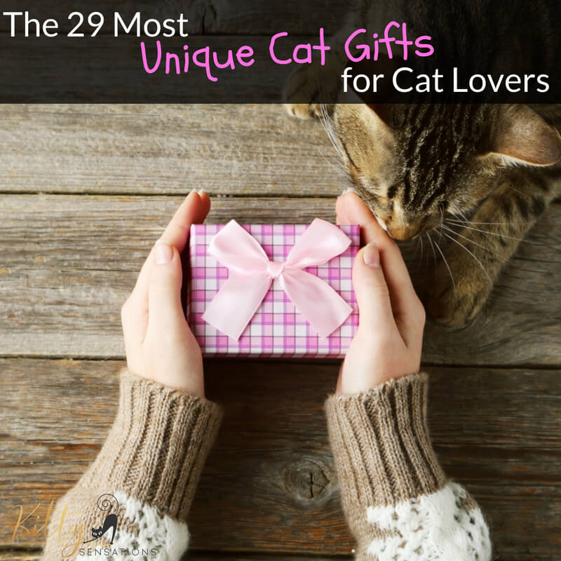 The 29 Most Unique Cat Gifts For Cat Lovers