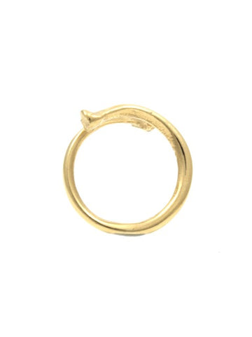 The Radius Ring - Gold