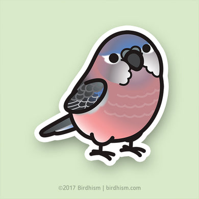 Chubby Bourke's Parakeet Stickers
