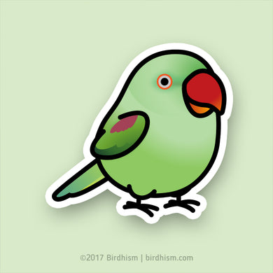 Chubby Alexandrine Ringneck Parakeet Female Stickers