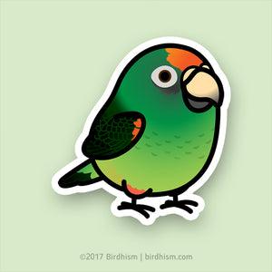 BACK ORDERED: Chubby Jardine's Parrot Stickers