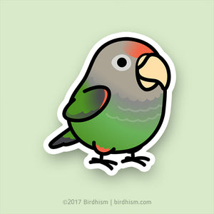 Chubby Cape Parrot Stickers