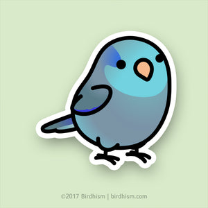 Chubby Blue Parrotlet Stickers