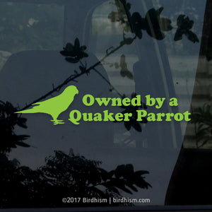 Owned by a Quaker Parrot Vinyl Decal