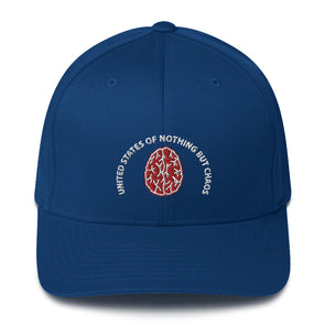 United States Of Nothing But Chaos Structured Twill Cap