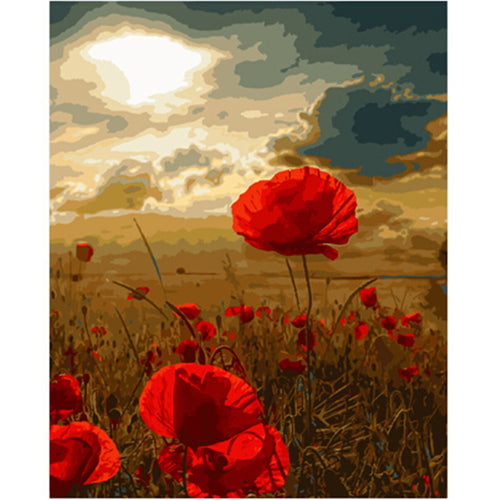 Poppies under the sky - DIY Paint By Numbers Kits for Adults