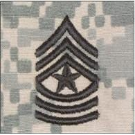 ACU Rank w/o Hook Fastener Backing (sew-on) - Enlisted/Officer
