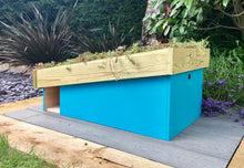 Blue hedgehog house with sedum mat roof area to insulate the home