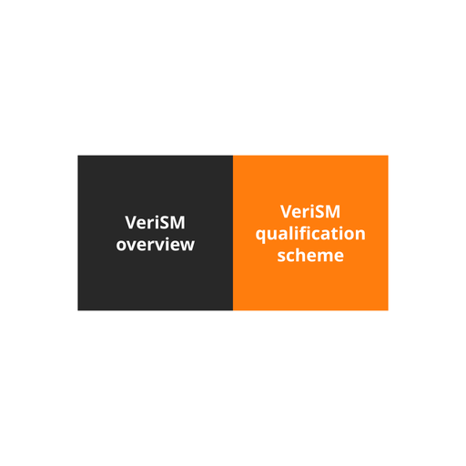 VeriSM Plus Course - 1 of 6: Introduction to VeriSM [Lessons]