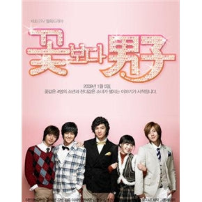 Korean Drama DVD: Boys over flowers, english subtitle