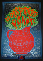 Chuck Sperry Widespread Panic Poster Ames Iowa 2014 Artist Edition