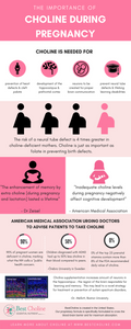 INFOGRAPHIC - Importance of Choline During Pregnancy