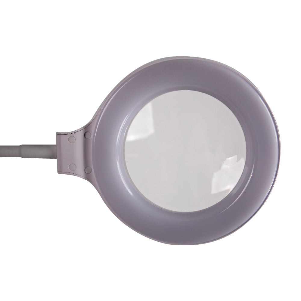 LED Task Light and Magnifier Table Lamp
