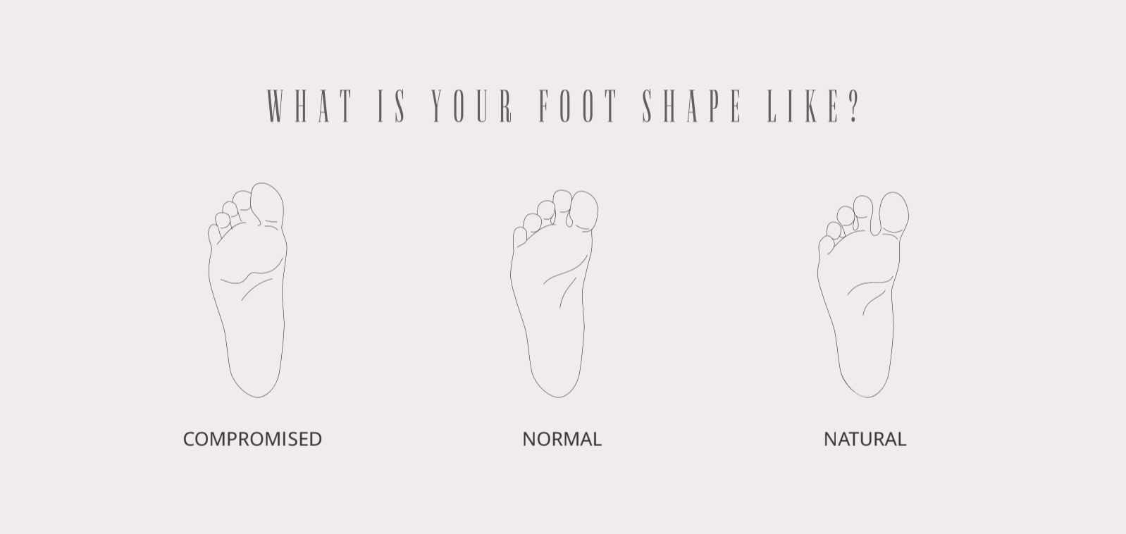 Different foot shapes representation.