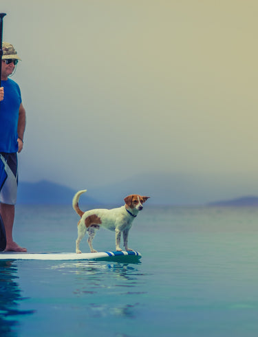 Paddleboarding - Will it Float Your Boat?
