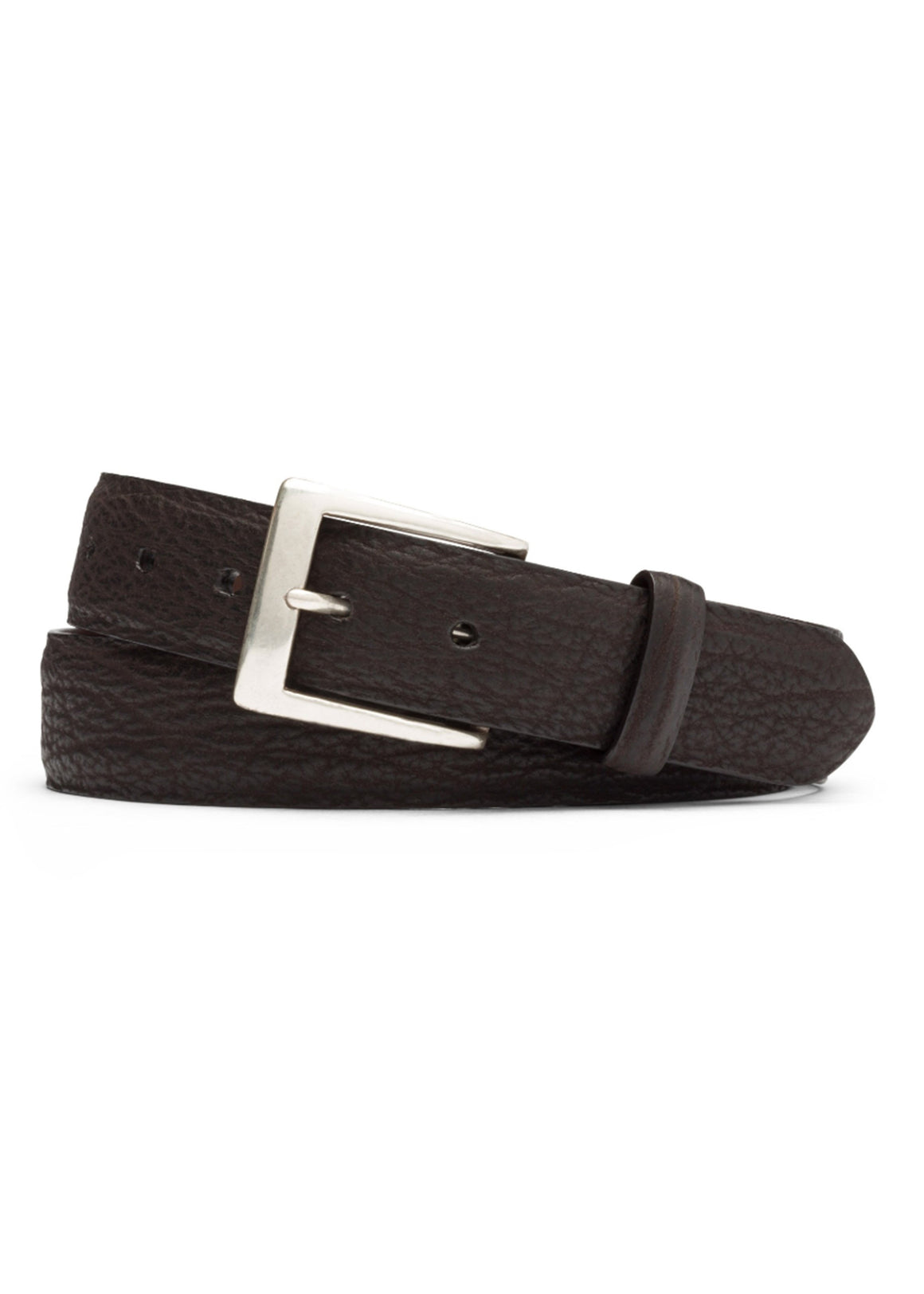 W. Kleinberg Shark Belt | Chocolate