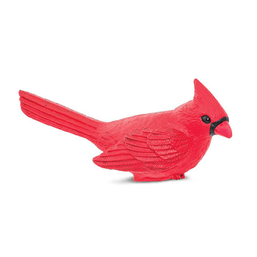 Safari Ltd. Cardinal | Pisces Pets