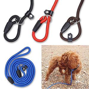 Slip Collar & Leash(LC008)