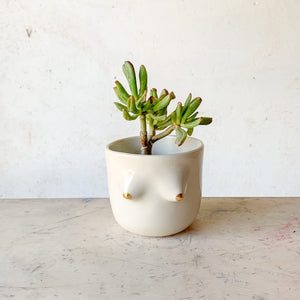 Elaine Planter -- GOLD OO