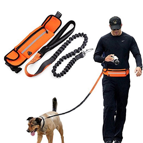 3 in 1 Hands Free Dog Leash