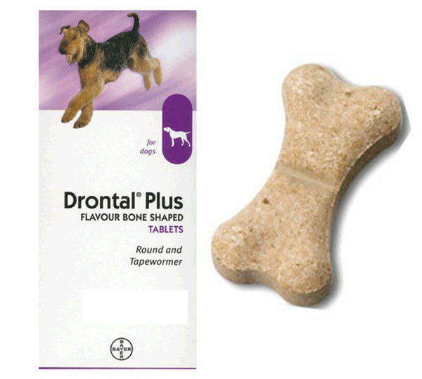 Bayer Drontal Flavour Plus De-wormer for Dogs