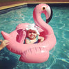 Flamingo Inflatable Baby Float - Gifts Buddies Reviews
