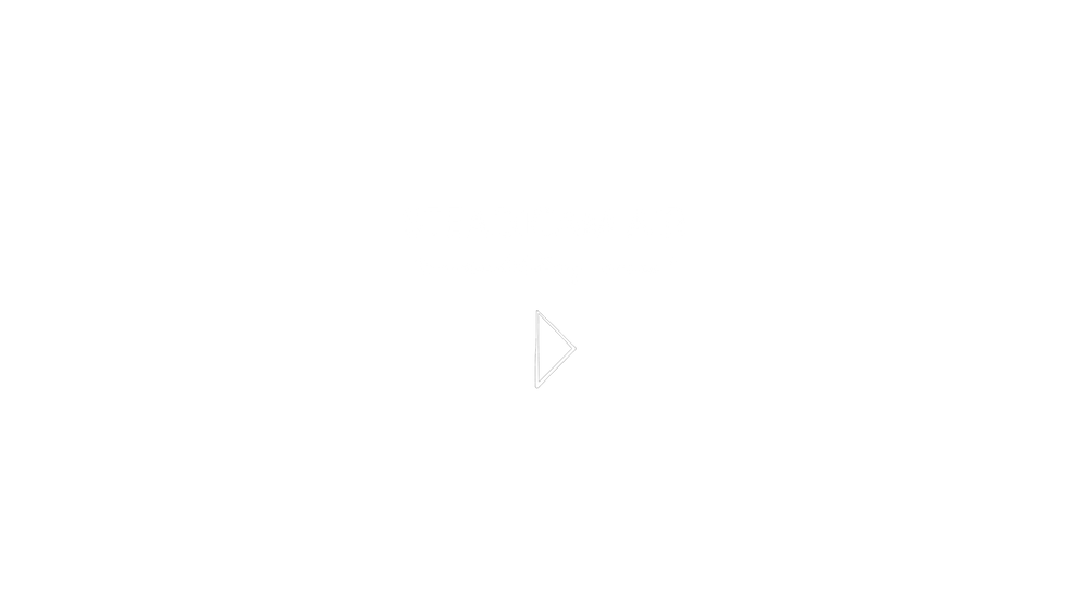 Steadicam Air - Something New