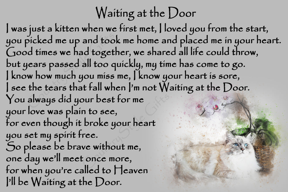 Longhaired Cat Rainbow Bridge Pet Memorial Waiting at the Door verse