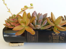 Wine Bottle Succulent Planter or Serving Dish / Wine Gifts / Wine Bottle Decor