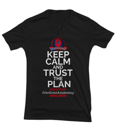 Q-Trust the Plan V-Neck Shirt