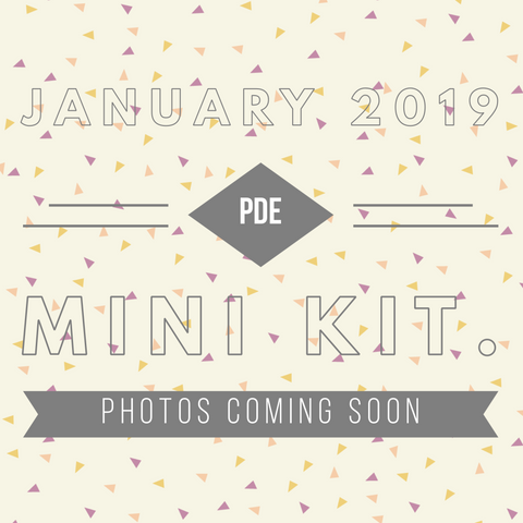 January PDE Mini 2019