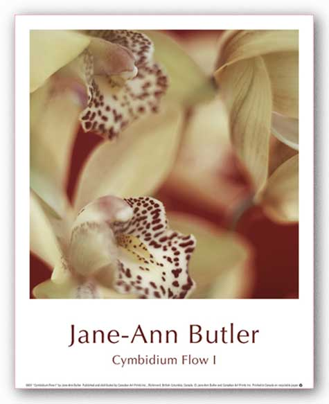 Cymbidium Flow I by Jane-Ann Butler