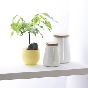 Mini Colorful Round Plastic Plant Flower Pots - Garden Gift Hub