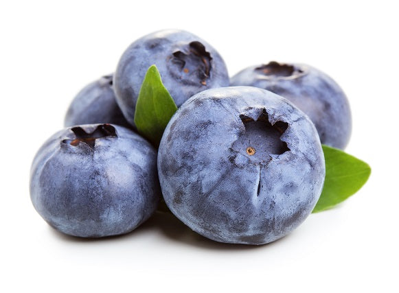 Sugar Free Blueberry Dry Flavoring Syrup Mix