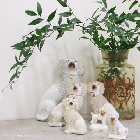 Collection of White Staffordshire Poodles