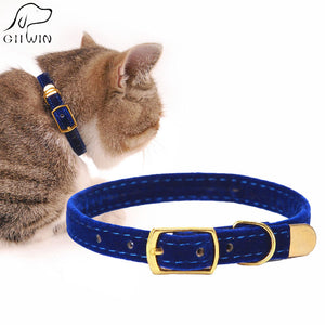 Fashionable Cat Collar