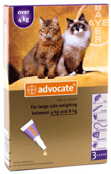 Advocate (Advantage Multi) Spot-on For Large Cats over 4 kg (8.8 lbs) 3 Pack