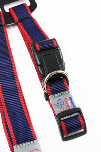 Collar & lead gift set - Large