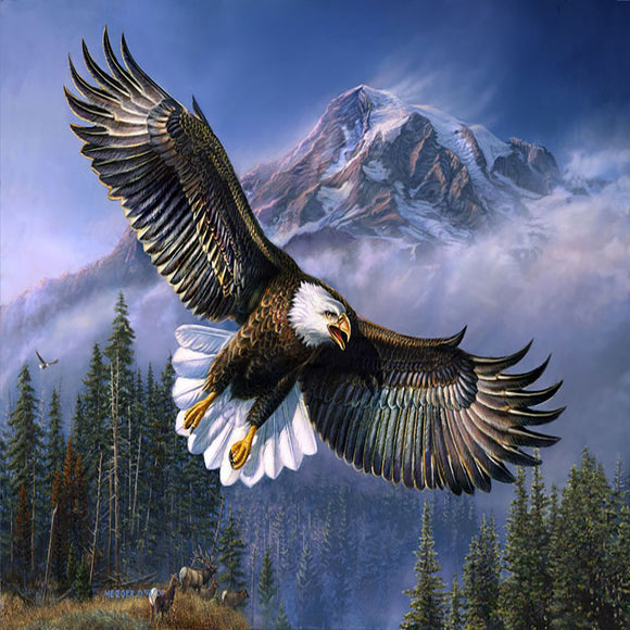 Blanket Queen Signature Select-  Eagle Ct- American Anthem Eagle