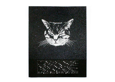 2019 Space Cat Calendar With Moon Phases