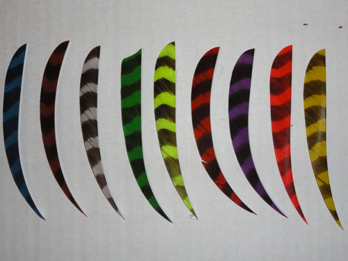 5-inch Parabolic Cut Barred Feathers by TrueFlight