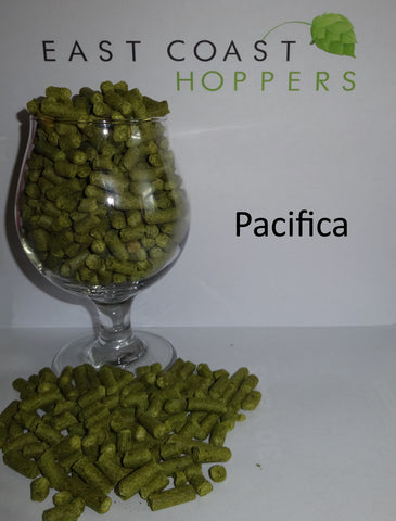 Pacifica - East Coast Hoppers