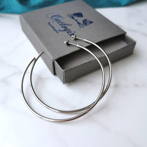 products/titanium_hoops_large_2.jpg