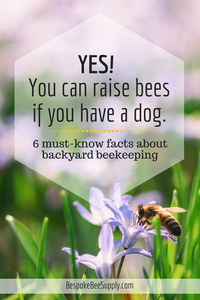 Beekeeping myths and the facts about raising bees: Backyard beekeeping // Bespoke Bee Supply