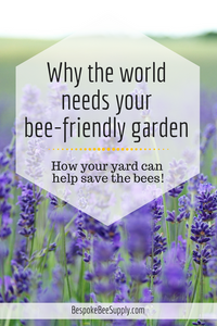 Your pollinator-friendly and bee-friendly garden helps protect honeybees. Here's how. Bespoke Bee Supply